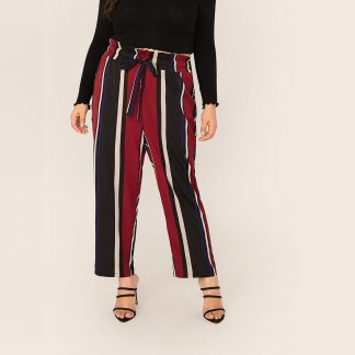 Plus Drawstring Paperbag Waist Striped Pants